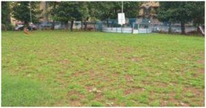 Lawn wroks_Parsi colony Andheri