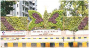 Mumbai Butterfly - 1st Vertical Garden at Publish place 1
